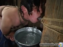 Mistress Sativa Rose takes dorian to the barn
